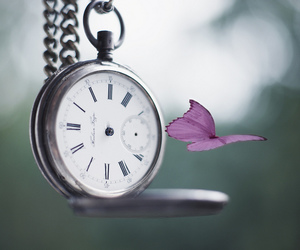 butterfly, clock, and time image