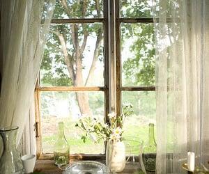 window, flowers, and vintage image