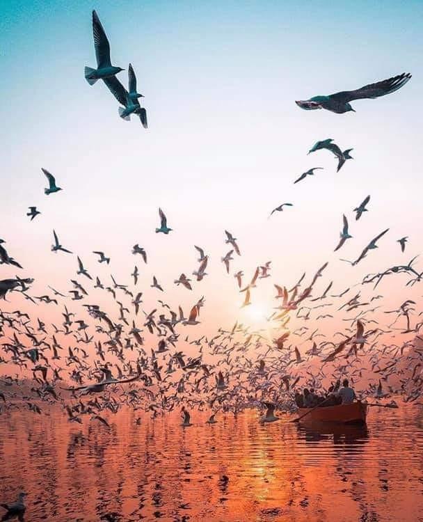 amazing, world, and beautiful image