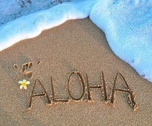 Aloha, beach, and summer image