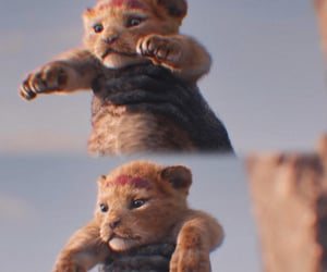 disney, lion king, and movie image