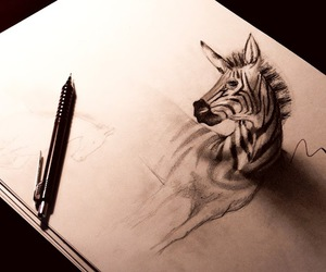drawing, zebra, and 3d image