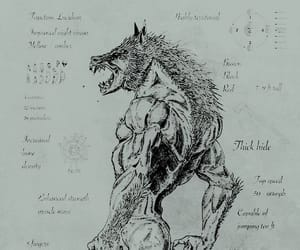 diagram, werewolf, and wolf image