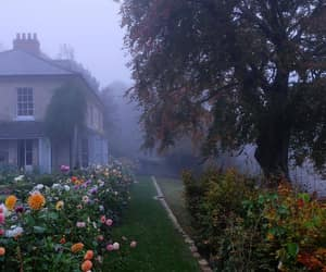 aesthetic, flowers, and house image