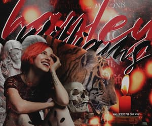 banner, hayley, and hayley williams image