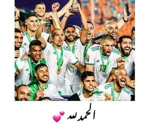 arabic, status, and algerie image