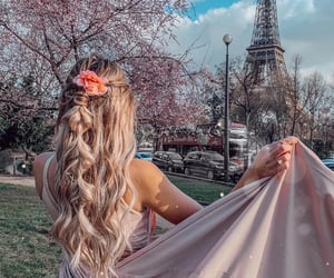 beauty, flowers, and france image