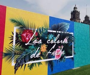 frida kahlo, exposición, and pintora image