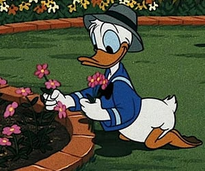 cartoon, disney, and duck image