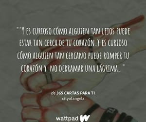 curioso, frase, and texto image
