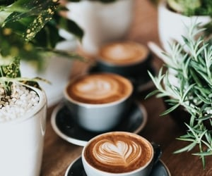 coffee, drink, and cafe image