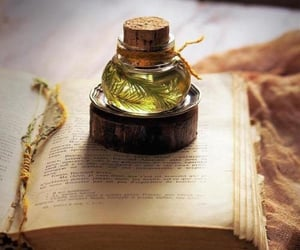 potion and rosemary image