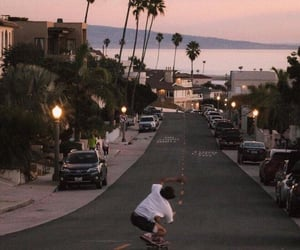 california, palm trees, and skateboard image