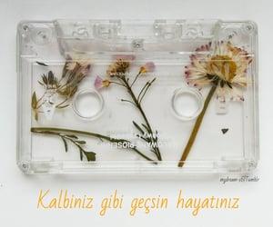 flower, kalp, and heart image