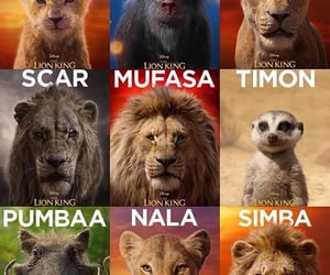 The lion king 👑🦁🎬Disney live action