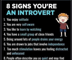 independent, introvert, and quiet image