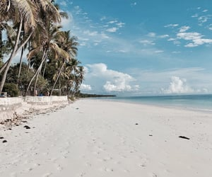 beach, Island, and nature image