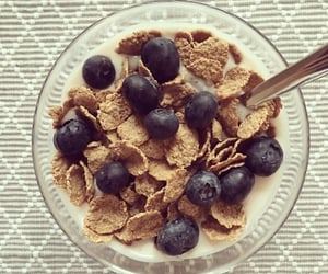 blueberries and cereal image