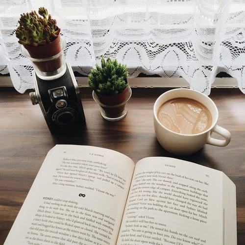 article, books, and fandom image