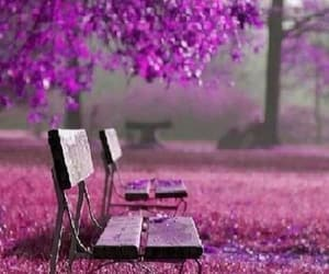 chair, purple, and amazing image
