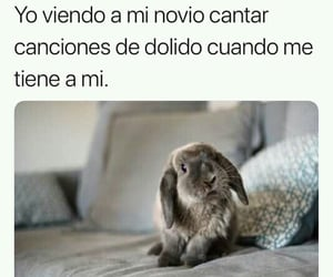 conejo, sad, and frases image