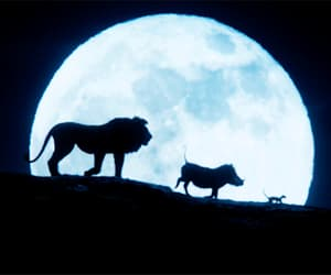 Action, the lion king, and gif image