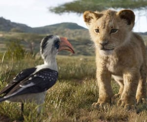 lion cub, simba, and the lion king image