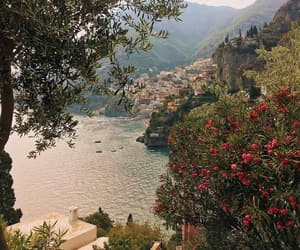 travel, flowers, and view image