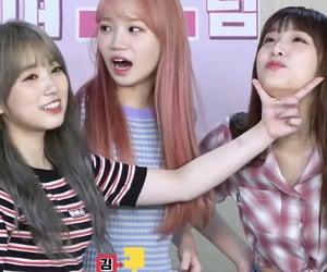 kpop, girl groups, and izone image