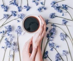 bloom, food, and coffee image