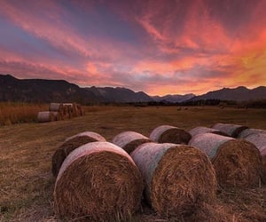 Alps, country, and countryside image