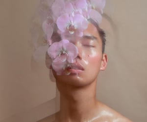 blurry, florals, and flowers image