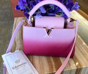 bag, Louis Vuitton, and pink image