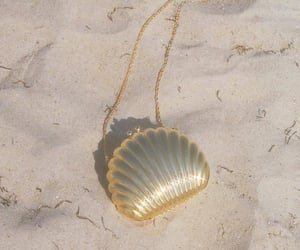 beach, gold, and shell image