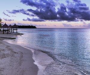 nature, beach, and sea image