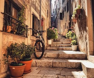 Croatia, enjoy, and flowers image
