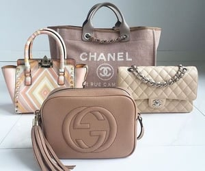 bag, gucci, and purse image