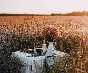 aesthetic, boho, and food image