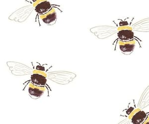 wallpaper, bee, and background image