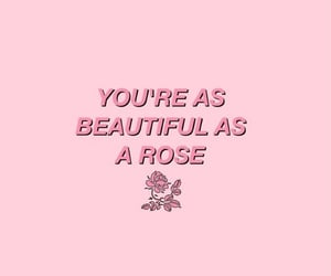 pink, rose, and quotes image