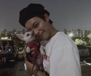boy, dog, and lq kpop image