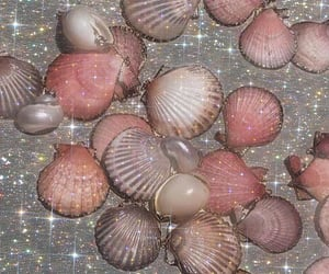 shell, sparkle, and aesthetic image