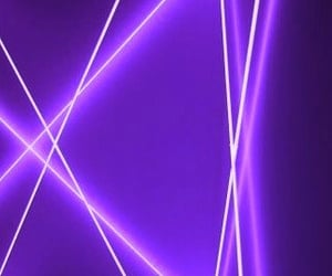 lavender, neon, and pink image
