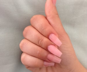 basic, beauty, and claws image
