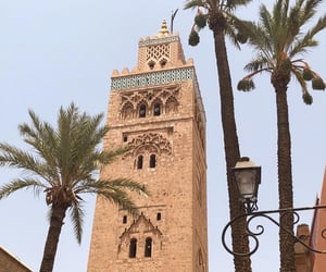 architecture, palm tree, and maroc image