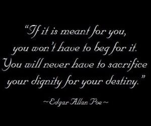 quotes, destiny, and sacrifice image