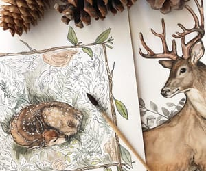 deer, illustration, and watercolor image