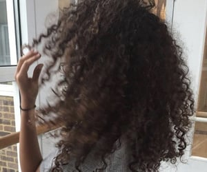 brown, curly hair, and hair image