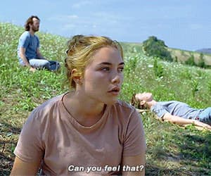beauty, midsommar, and blonde image