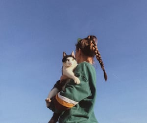 cat, fashion, and girl image